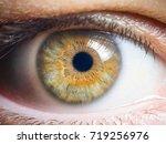 human eye close up | Shutterstock . vector #719256976