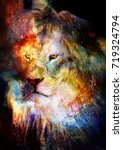 lion in the cosmic space. lion... | Shutterstock . vector #719324794