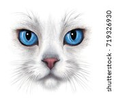 Stock photo hand drawing portrait of white cat with blue eyes isolated on white background 719326930