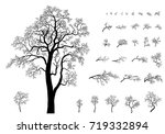 set o the trees and  branches.... | Shutterstock . vector #719332894
