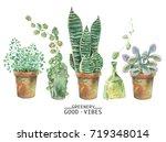 watercolor green plants in pots....   Shutterstock . vector #719348014