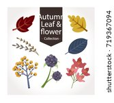 set of autumn leaves and plants ... | Shutterstock .eps vector #719367094