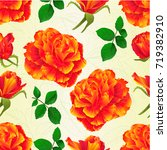 seamless texture flowers orange ... | Shutterstock .eps vector #719382910