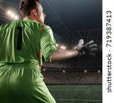 soccer goalkeeper catches a... | Shutterstock . vector #719387413