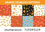 seamless floral pattern set ....   Shutterstock .eps vector #719395129