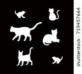 set of white cat silhouette on... | Shutterstock .eps vector #719457664