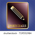 gold emblem with pencil icon... | Shutterstock .eps vector #719551984