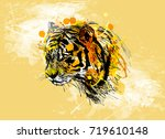 colored hand sketch of the head ... | Shutterstock .eps vector #719610148