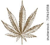 vector antique engraving... | Shutterstock .eps vector #719614558