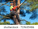 lumberjack with saw and harness ... | Shutterstock . vector #719635486