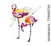 beautiful watercolor flamingos  ... | Shutterstock .eps vector #719660764