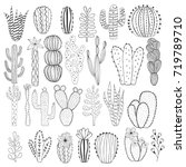 hand drawn doodle cactus | Shutterstock .eps vector #719789710