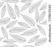 hand drawn rowan leaves... | Shutterstock . vector #719815243