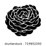 flower rose  black and white.... | Shutterstock .eps vector #719852350