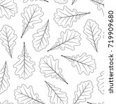hand drawn oak leaves isolated... | Shutterstock . vector #719909680
