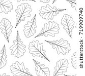 hand drawn oak leaves isolated... | Shutterstock . vector #719909740