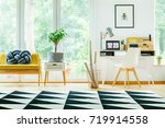 plant on cabinet next to yellow ... | Shutterstock . vector #719914558