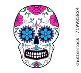 day of the dead colorful skull... | Shutterstock .eps vector #719935834