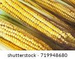 untreated corn. selective focus.   Shutterstock . vector #719948680