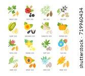 set vector illustration of... | Shutterstock .eps vector #719960434