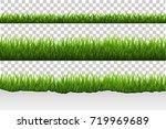 grass set | Shutterstock . vector #719969689