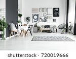 spacious black and white fully... | Shutterstock . vector #720019666
