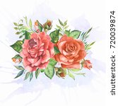 roses on watercolor background | Shutterstock . vector #720039874