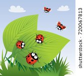 Ladybirds. Vector Illustration.