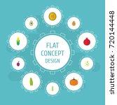 flat icons bean  jonagold ... | Shutterstock .eps vector #720144448