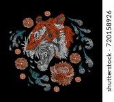portrait of a tiger.... | Shutterstock .eps vector #720158926