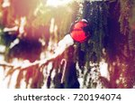 winter holidays and decoration... | Shutterstock . vector #720194074