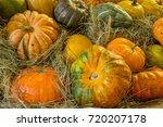 big pile of many large pumpkins ... | Shutterstock . vector #720207178