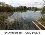 ein afek   nature reserve | Shutterstock . vector #720219376
