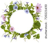 adorable flower meadow... | Shutterstock . vector #720221650