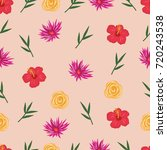 repeated floral pattern  | Shutterstock .eps vector #720243538