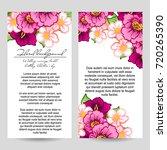 vintage delicate invitation... | Shutterstock .eps vector #720265390