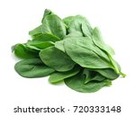 fresh spinach leaves on white... | Shutterstock . vector #720333148