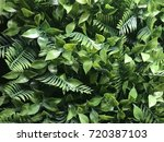 Plastic Or Fake Plant For Wall...