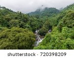 Rain Forests At Thusharagiri ...
