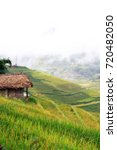 Terraced Rice Field And Cottag...