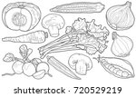 sketchy hand drawn vegetables | Shutterstock .eps vector #720529219