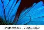 Stock photo wings of a butterfly ulysses wings of a butterfly texture background closeup 720533860