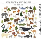 flat asian flora and fauna map... | Shutterstock .eps vector #720546454