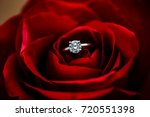Stock photo a nice diamond ring put in the center of beautiful blossoming rose 720551398