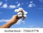 cotton field human hand | Shutterstock . vector #720615778