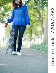 walking for a dog  lady ... | Shutterstock . vector #720675463