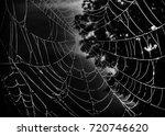 in the dark on wood spider made ... | Shutterstock . vector #720746620