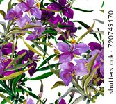 summer garden flowers seamless  ... | Shutterstock . vector #720749170