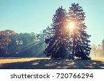 autumn city park with sunbeams | Shutterstock . vector #720766294