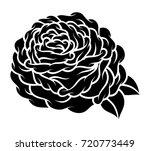 flower rose  black and white.... | Shutterstock .eps vector #720773449